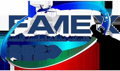 logofamexcolores